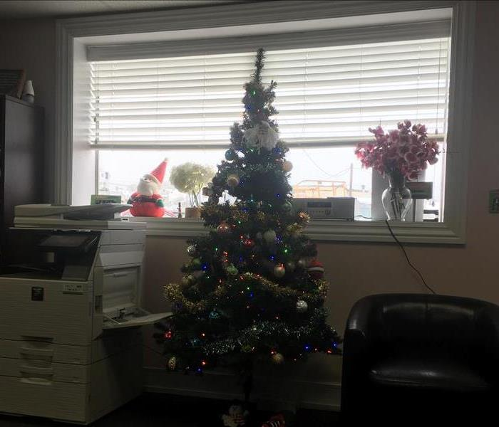 Photo of Christmas Tree in our office
