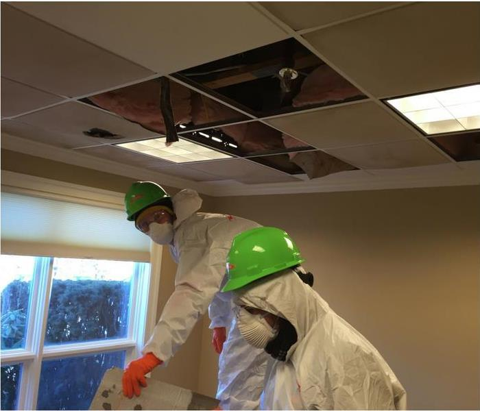 Why SERVPRO Commercial Disaster Restoration in Waltham