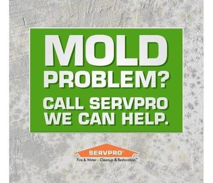 SERVPRO Mold Poster