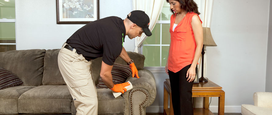 Lexington, MA carpet upholstery cleaning